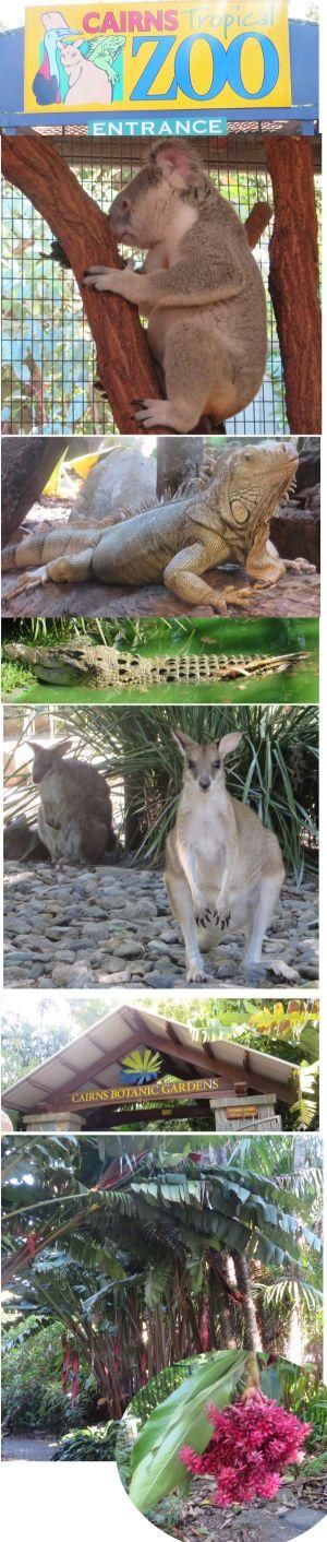 動物園と植物園に